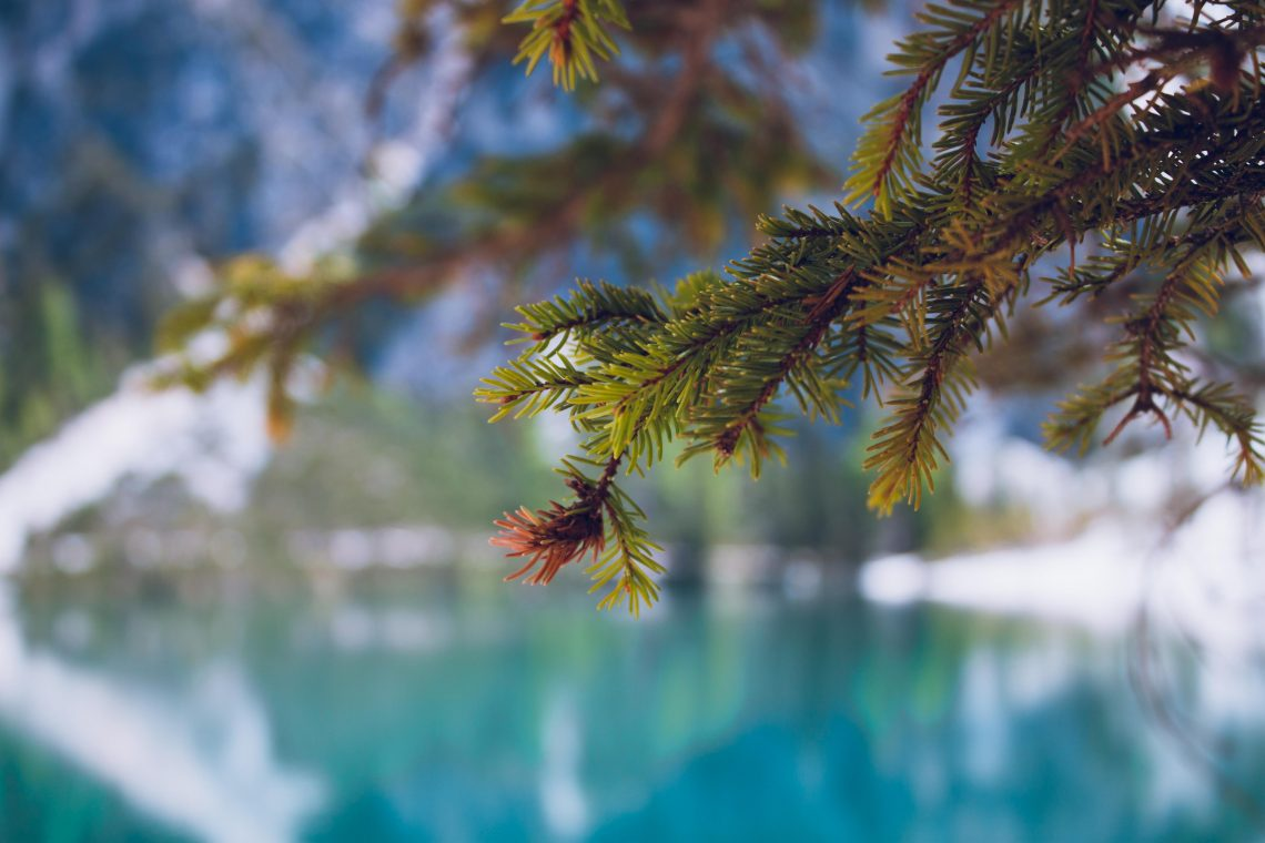 ramo-foto-al-lago-di-braies-maggio-2019